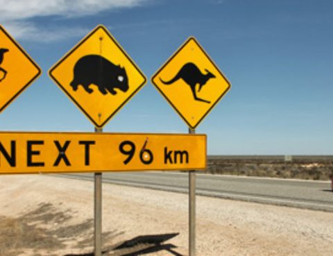 Why migrate to Australia? 10