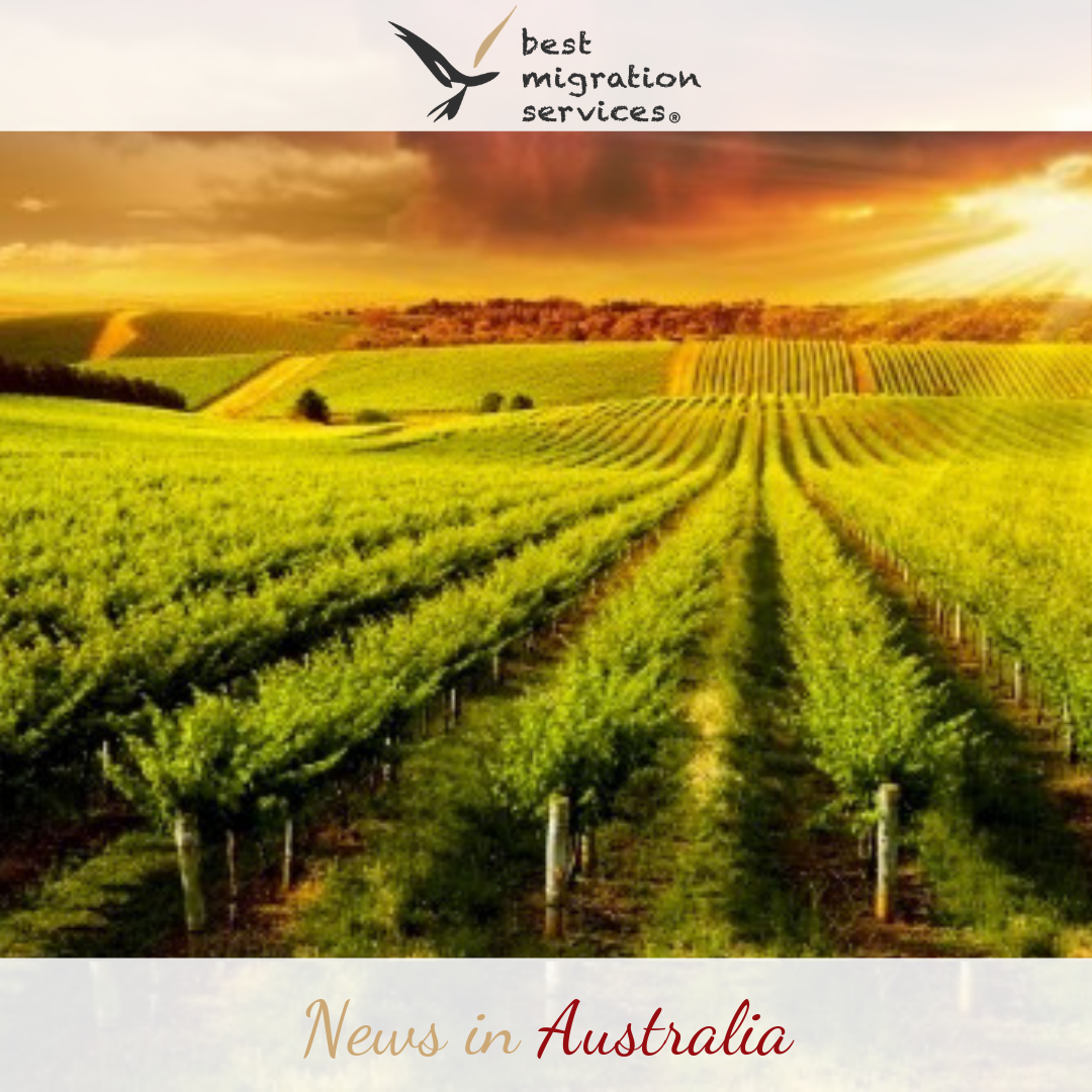 BMS - Subscribe to blog Australian Immigration Daily News