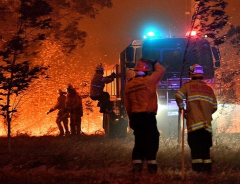 [Press Release] BMS Australia Offers Condolences to The Martyrs of Wild Bush Fires        11