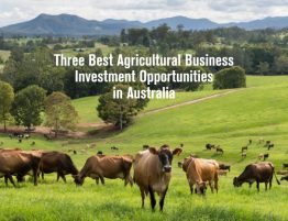 Three Best Agricultural Business Investment Opportunities in Australia 9