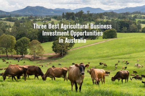 Three Best Agricultural Business Investment Opportunities in Australia 2